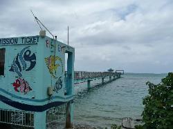 Fish Eye Marine Observatory