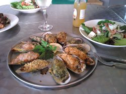 Coromandel Mussell Kitchen