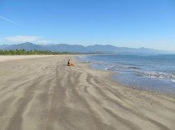 Bahía Matanchén