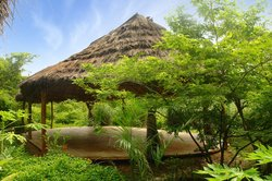 Equilibrio Yoga Art Surf Resort