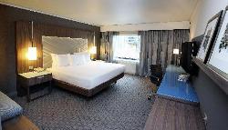 Hilton Superior Room