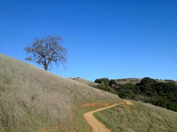 Monte Bello Open Space Preserve