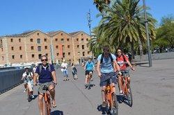Budget Bikes Tours