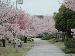 Awajishima Park