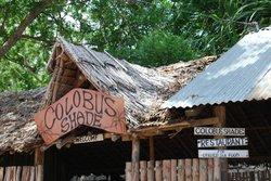 Colobus Shade