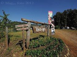 Nop Phu Pha Farm