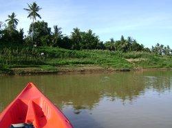 Green Orange Kayaks