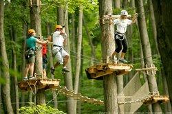 Treetop Trekking-Barrie