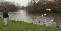 east park lake, Hull.