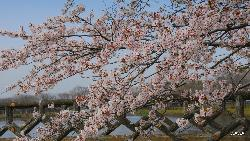 Ottonuma Park