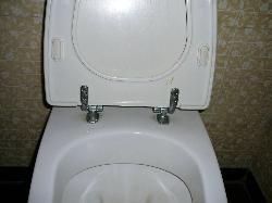 faeces on toilet