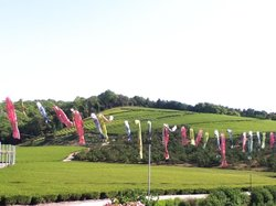 Senzai Farm