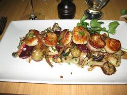 An ocean's worth of scallops. Faaabulous