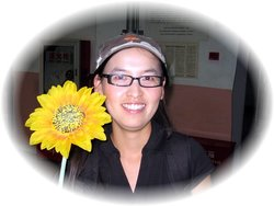 Sunflower Tours China