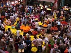 KR Market