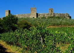 Walls of Monteriggioni