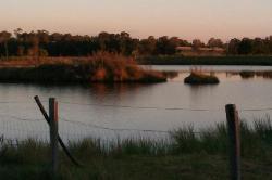 Small Lake on property