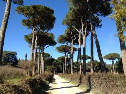 Via Francigena della Tuscia