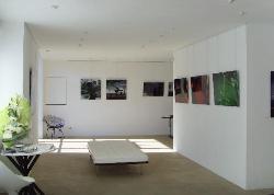 Galerie Pascal Laine