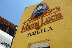 Puerto Vallarta Mama Lucia Tequila Tour