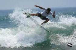 Carton the Surf Shop