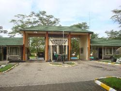 Lake Nakuru,Lake Elementaita,Lake Naivasha 1Day Tour - Tekko Tours & Travel
