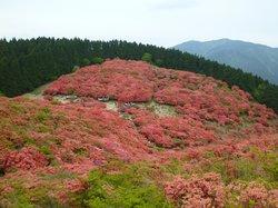 Katsuragi Highlands