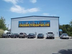 Insectropolis, the Bugseum of New Jersey