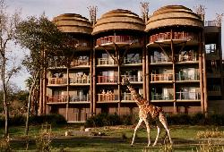 Disney's Animal Kingdom Lodge