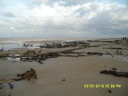Praia do Araruna