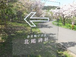 Hokuohirin