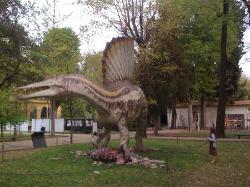 """Museo di Storia Naturale, Orto Botanico """"Giardino dei Semplici"""""""