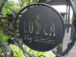 Odawara Lusca