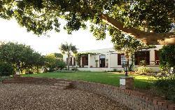Ridgeback House
