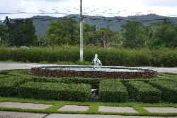 普吉岛植物园