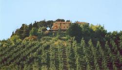 Casale di Colle