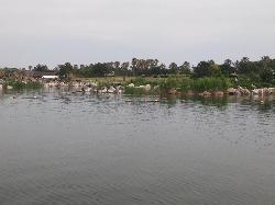 Ako Kaihin Park