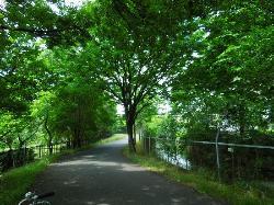 第二公園脇、見沼代用水沿い歩道