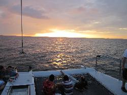 Seahorse Sailing