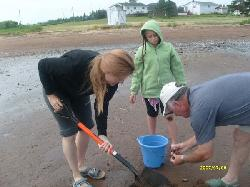 Experience PEI - Digging for Dinner