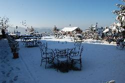 snow in the lawns