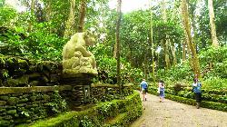Magilla Bali Tours
