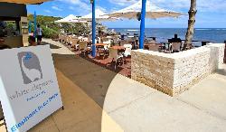 The White Elephant Beach Cafe