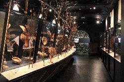 Musée de l'Osier et de la Vannerie