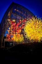 Chihuly Hage og Glass