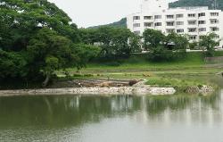 Ujo Park