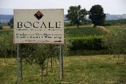 Bocale Vini