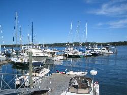 Lobsterman's Wharf
