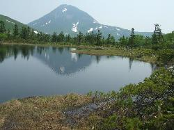ネイチャーガイドと行った 羅臼湖 三の沼から見た 羅臼岳  (43319612)