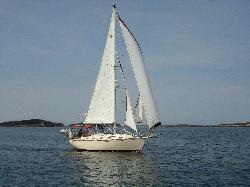 Sail Casco - Tours